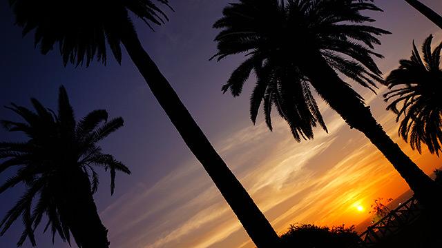 サンタモニカビーチ 夕日